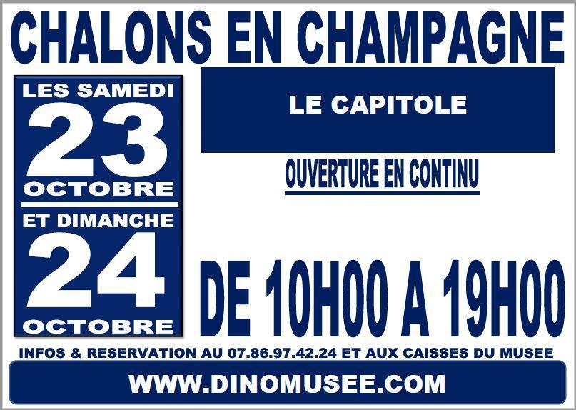 Public chalons en champagne