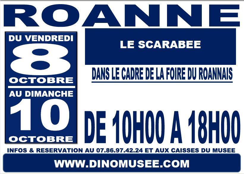 Public roanne